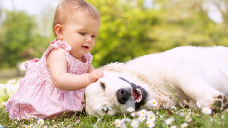 Piacciono davvero al tuo cane le coccole che gli dai?